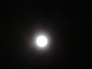 12910_blue_moon_001